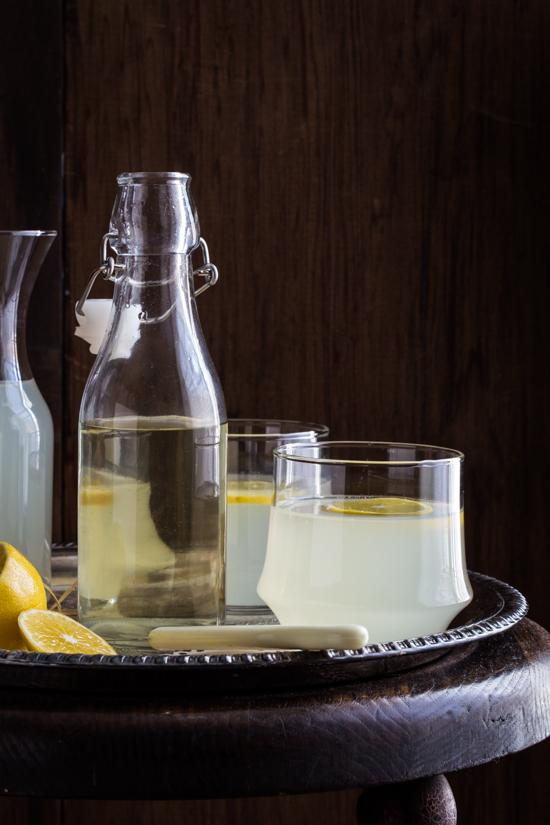 citrus rosemary vodka spritzer-9671