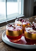Cranberry Ginger Cocktail | jellytoastblog.com