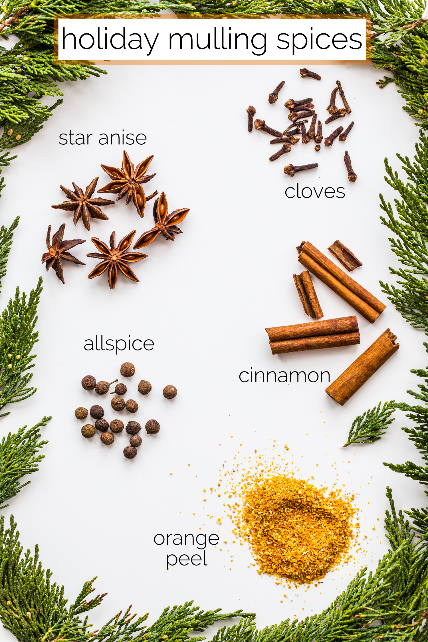 DIY Homemade Holiday Mulling Spices Infographic